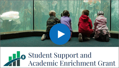 Student Support and Academic Enrichment Grant - Play Video