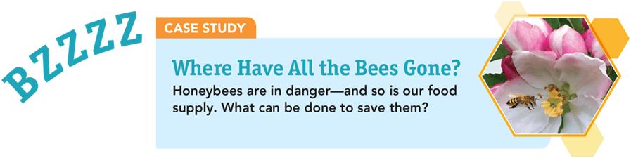 Case Study: Where have all the Bees Gone? Honeybees are in danger -- and so is our food supply. What can be done to save them?