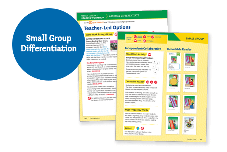 Small Group Differentiation